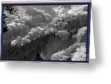 Cherry Blossom Season In Japan Mountain Hills Trees Photography By Navinjoshi At Fineartamerica.com  Greeting Card