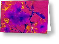 Cherry Blossom Series 3 Greeting Card by Jen White
