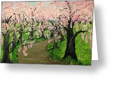 Cherry Blossom Walk Greeting Card