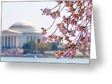 Cherry Blossoms And Jefferson Memorial Greeting Card
