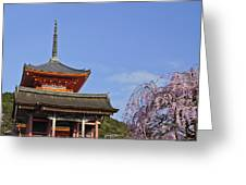 Cherry Blossoms And Kiyomizu-dera Greeting Card