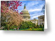 Cherry Blossoms At The Capitol Greeting Card