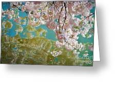 Cherry Blossoms Close Up Six Greeting Card