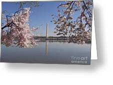 Cherry Blossoms Monument Greeting Card