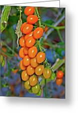 Cherry Tomatoes Greeting Card