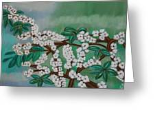 Cherry Tree Rich In Flowers Greeting Card