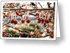 Cherry Tree In Winter Greeting Card