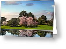 Cherry Tree Reflections Greeting Card