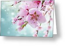 Cherry Tree Twig On Blue Greeting Card