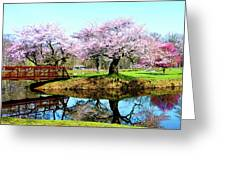 Cherry Trees In The Park Greeting Card
