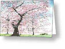 Cherry Trees Greeting Card by Patrick Grills