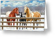 Chestnut Appaloosa Palomino Pinto Black Foal Horses In Snow Greeting Card by Crista Forest