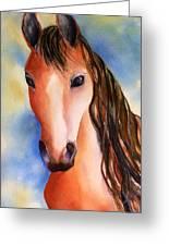 Chestnut Horse Greeting Card