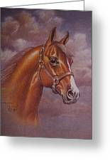 Chestnut Quarter Horse Greeting Card by Dorothy Coatsworth