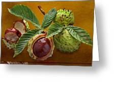 Chestnuts 3 Greeting Card