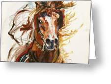 Cheval Arabe Monte En Action Greeting Card