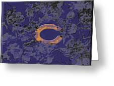 Chicago Bears B1 Greeting Card