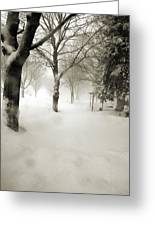 Chicago Blizzard 2011 Greeting Card