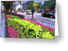 Chicago Color Greeting Card
