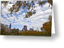 Chicago Skyline And Fall Colors Greeting Card