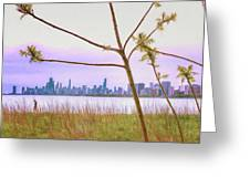 Chicago Skyline - The View From Montrose Point Greeting Card