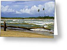 Chichirivihe Bay Greeting Card
