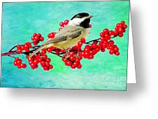 Chickadee And Winterberry Greeting Card