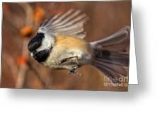 Chickadee Blurrrr Greeting Card