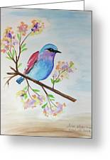 Chickadee On A Branch Greeting Card