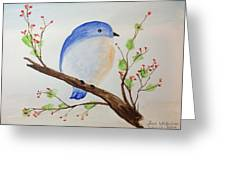 Chickadee On A Branch With Leaves Greeting Card