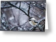 Chickadee Rain Greeting Card