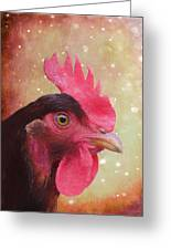 Chicken Portrait - Painting Greeting Card