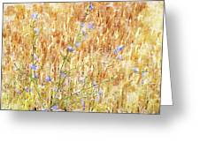 Chickory N Wheat W C Greeting Card