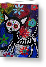 Chihuahua Day Of The Dead Greeting Card