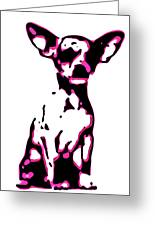 Chihuahua In Pink Greeting Card