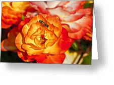 Chihuly Rose With Bee Greeting Card