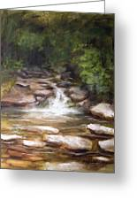 Cooling Creek Greeting Card by Melissa Herrin