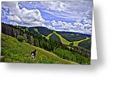 Children On Vail Mountain Greeting Card