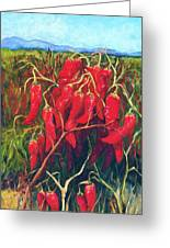 Chile Field Greeting Card