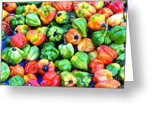 Chili Pepper Fest Greeting Card