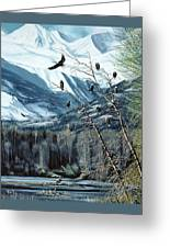 Chilkat River Eagles Greeting Card