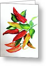 Chillies From My Garden Greeting Card by Karin  Dawn Kelshall- Best