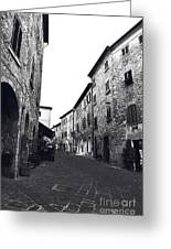 Chilling Out In Tuscany Greeting Card