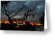 Chilling Sunset Greeting Card