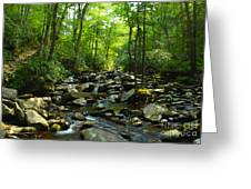 Chimney Tops Trail Greeting Card