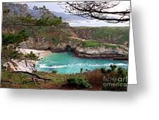 China Cove At Point Lobos Greeting Card by Charlene Mitchell