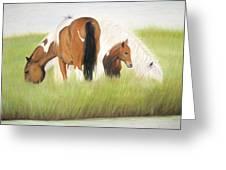 Chincoteague Ponies Greeting Card