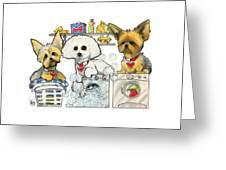 Chinea 7-1438 Greeting Card