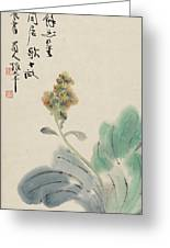 Chinese Cabbage Greeting Card