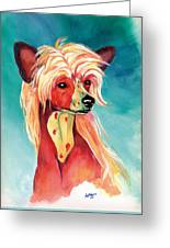 Chinese Crested Sunset Greeting Card